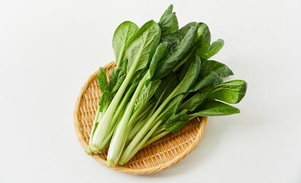 今日は小松菜の日だそうです。