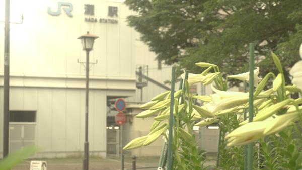 神戸市灘区のピアノ教室の日常!