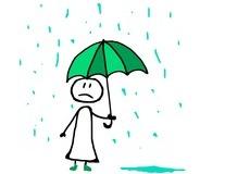 今日は、小雨でした。
