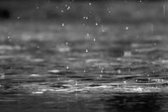 雨はそれほどです。